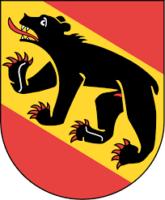 Wir sind deine Personal Trainer in Bern